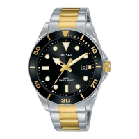 Pulsar PG8295X1 Mens Watch