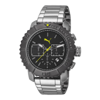 Puma Gallant PU103561001 Mens Watch Chronograph