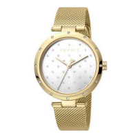 Esprit ES1L214M0065 Louise Silver Gold Mesh Ladies Watch